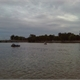 北海公园荷花美图片