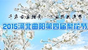 2015曲阳梨花节
