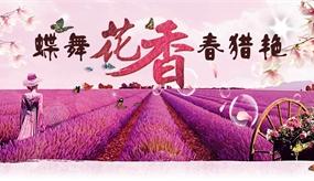 2015春季河北赏花专题