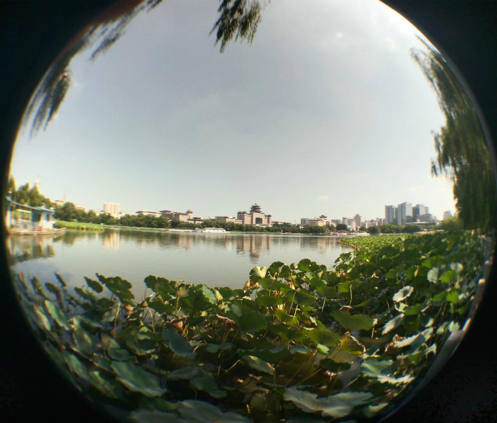 北京莲花池公园图片