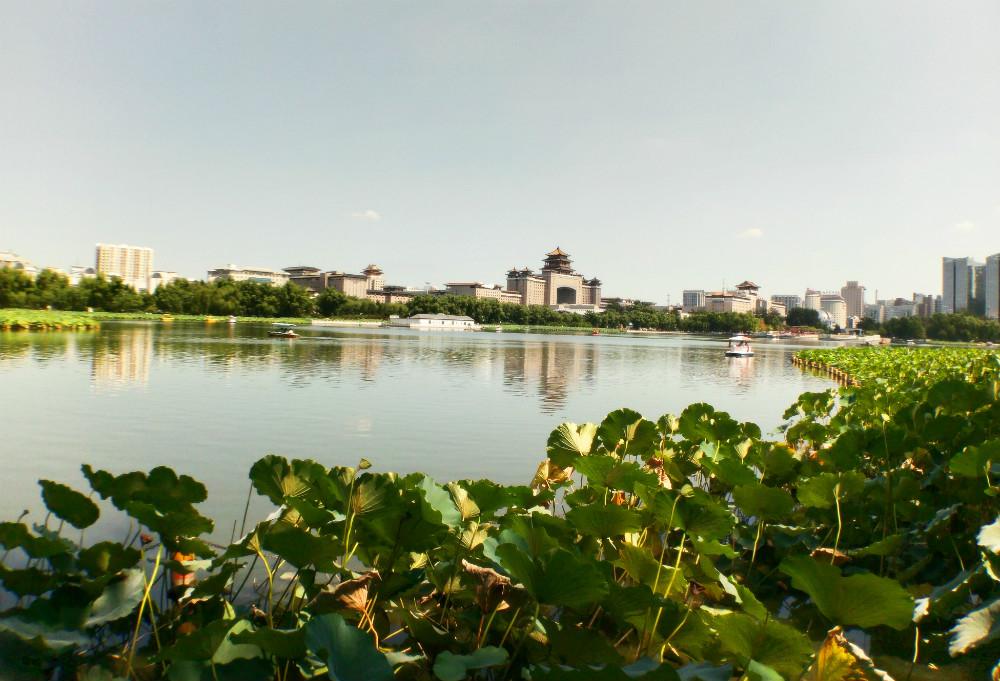 游乐北京莲花池公园图片